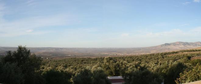 point de vue depuis la terrasse